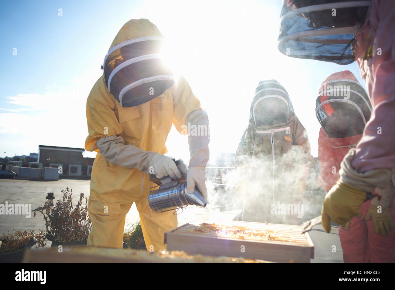Male and female beekeepers using bee smoker on city rooftop - Stock Image