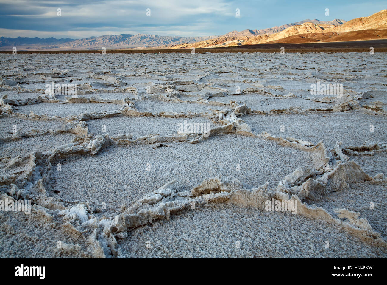 Cracked salt pans, Badwater Basin, Death Valley National Park, California USA - Stock Image