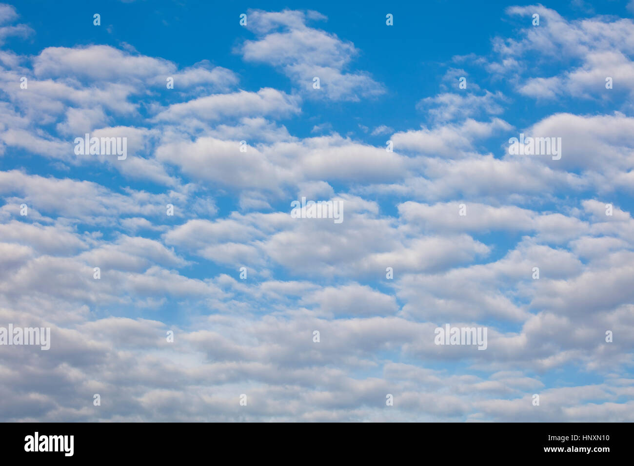Blue sky with puffy white clouds over Central Florida - Stock Image