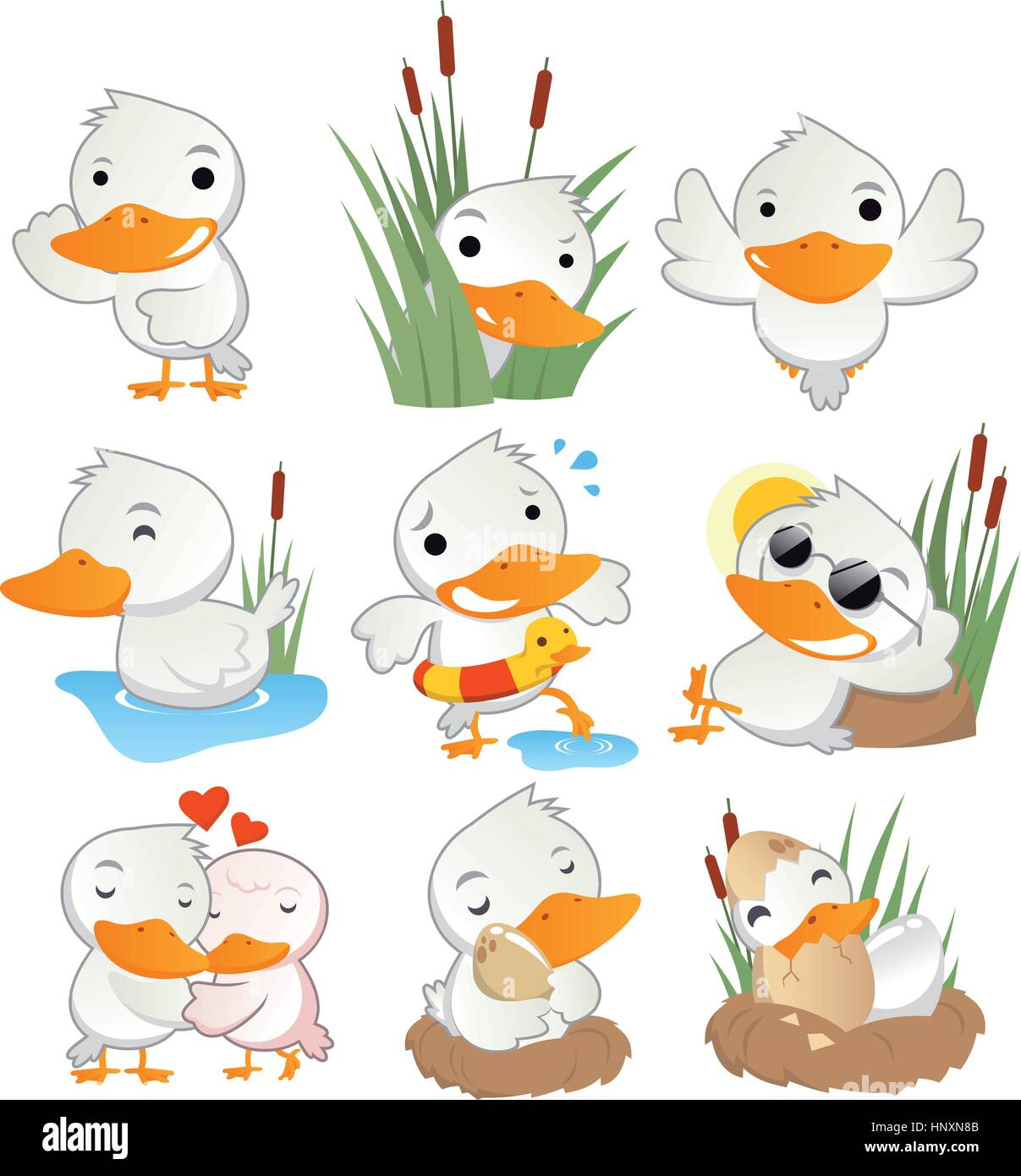 Cute duck in action set collection, with duck in different situations like, standing duck, hiding duck, flying duck, - Stock Vector