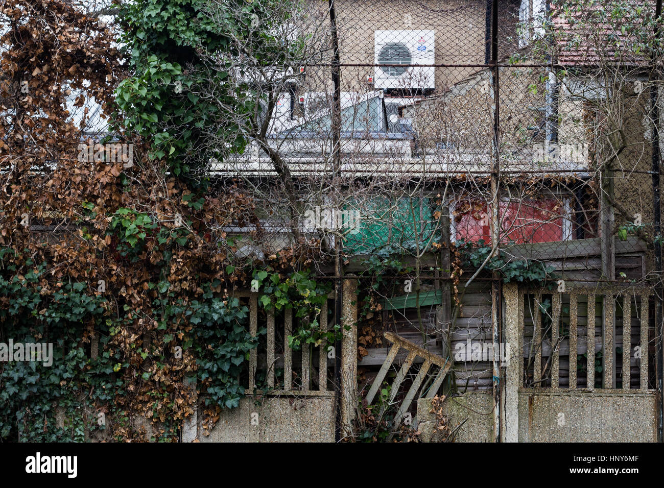 Dilapidated wall and garden in Clapham, South London, England,UK. - Stock Image