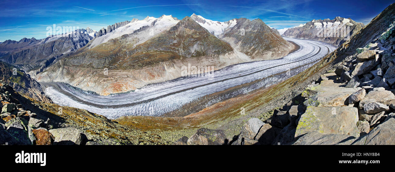Majestic view to Aletsch glacier, the largest gracier in Alps and UNESCO herritage from Bettmeralp, Valais, Switzerland, - Stock Image