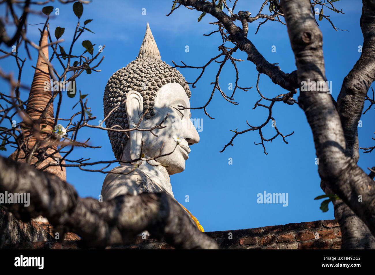 Big Buddha statue in Wat Yai Chai Mongkol monastery in Ayuttaya, Thailand - Stock Image