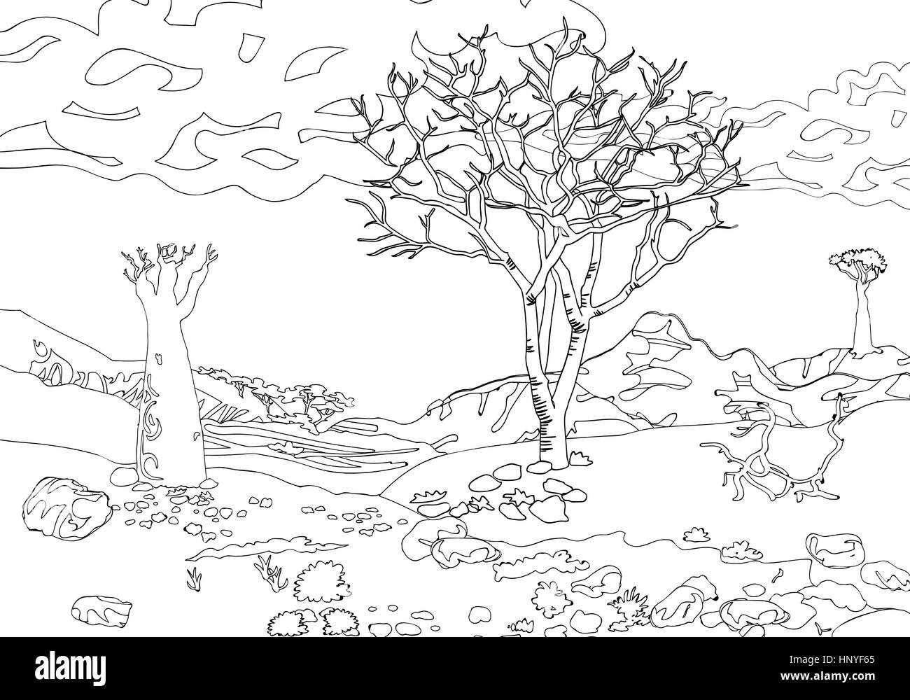 Coloring Book For Adults Black And White Vector Illustration