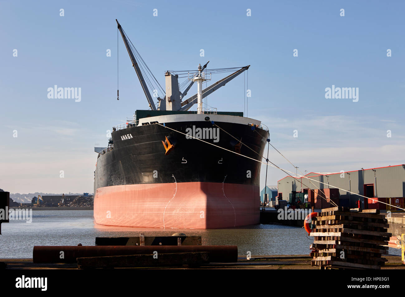 anasa bulk carrier ship high in the water berthed at Canada dock liverpool uk - Stock Image