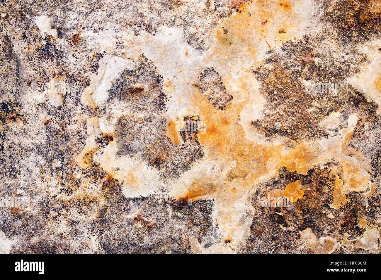 Flecked dark light rock texture found on Northumberland coastline. Berwick upon Tweed. UK - Stock Image