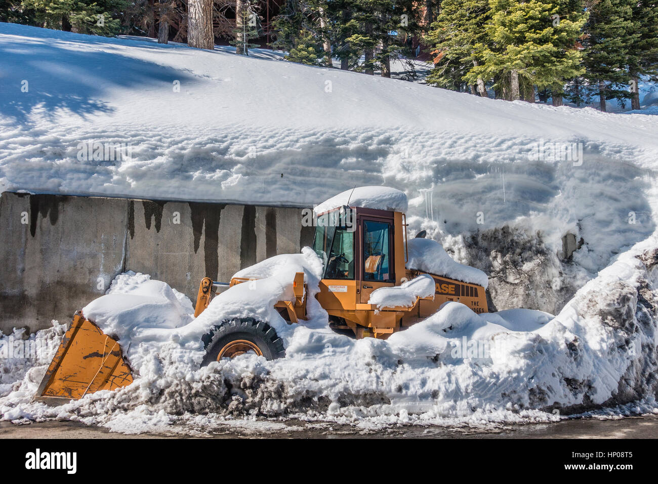 A large yellow snow removal front-loader tractor is covered with snow and has snow pushed in around it which effectively - Stock Image