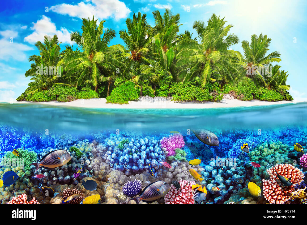 Tropical Island Within Atoll In Ocean And Wonderful Beautiful Underwater World With Corals Fish Stock Photo Alamy