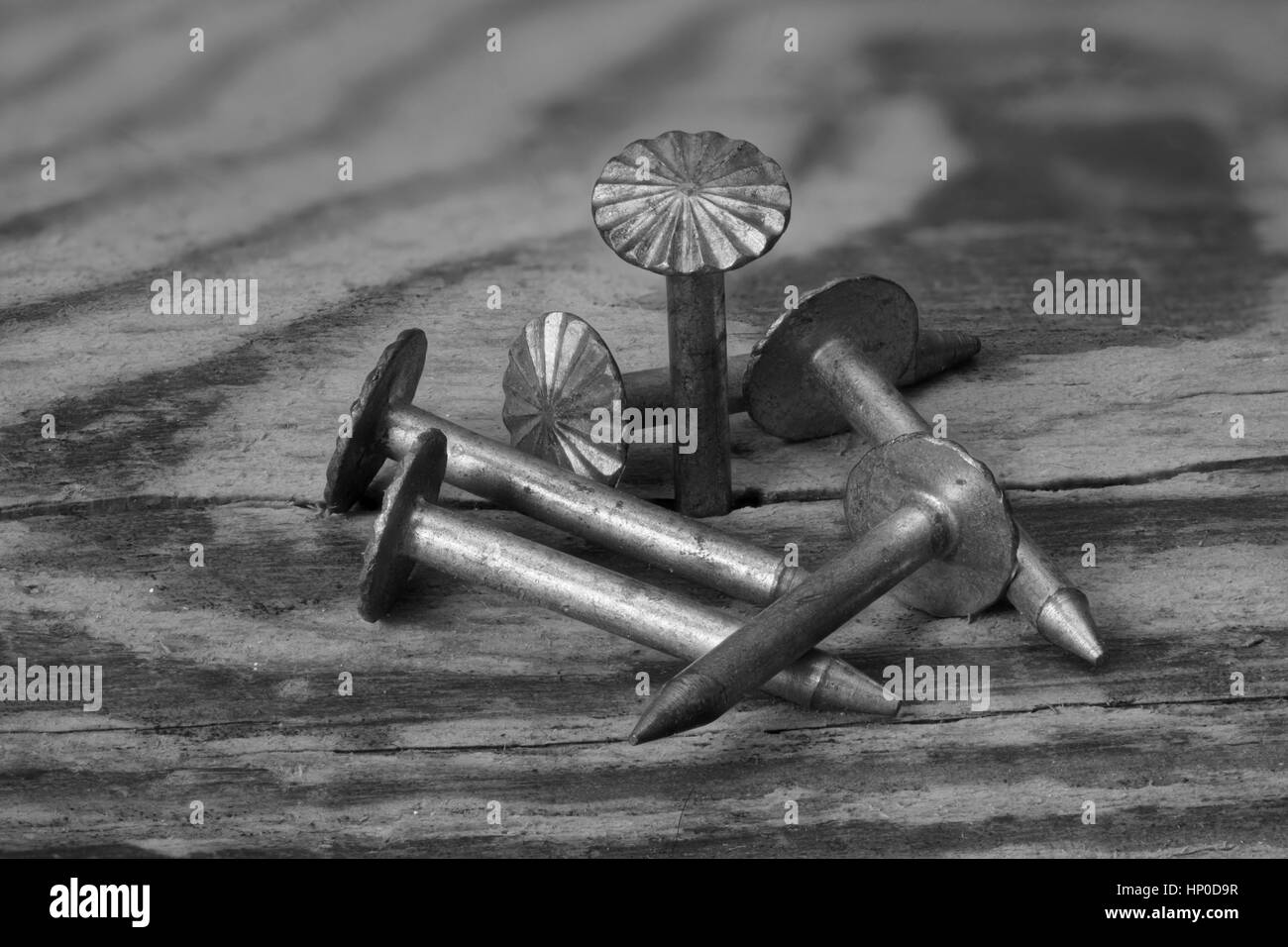 Upholstery sharp nails on a wooden surface board - Stock Image