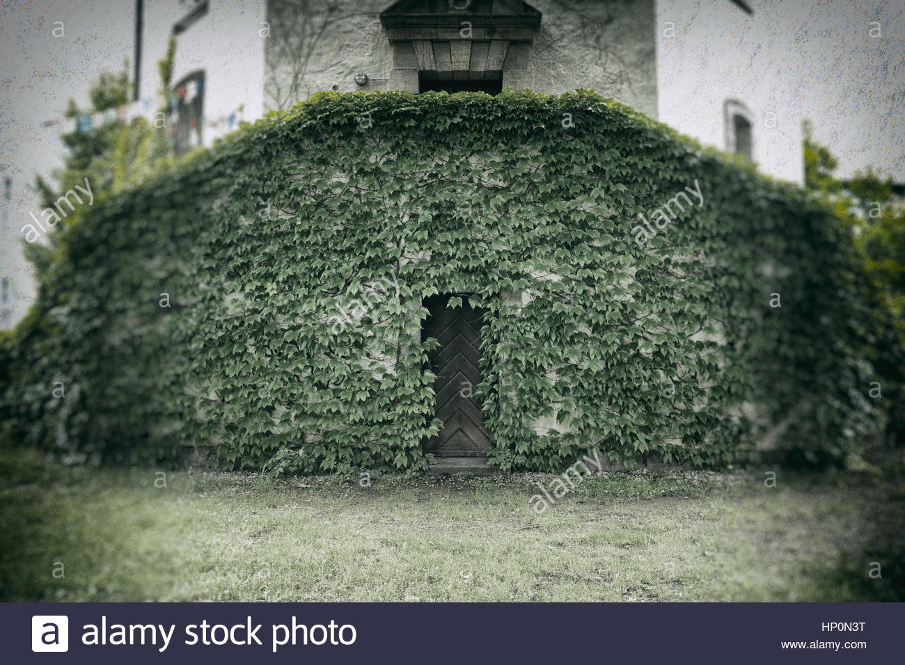 Old tower building ivy covered wooden door spooky - Stock Image