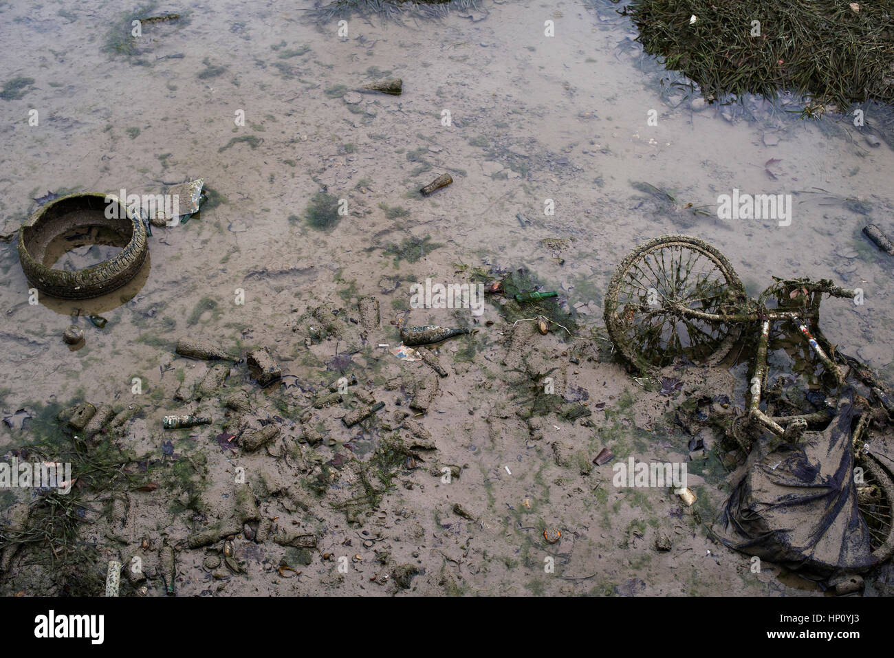 Polluted stream - Stock Image