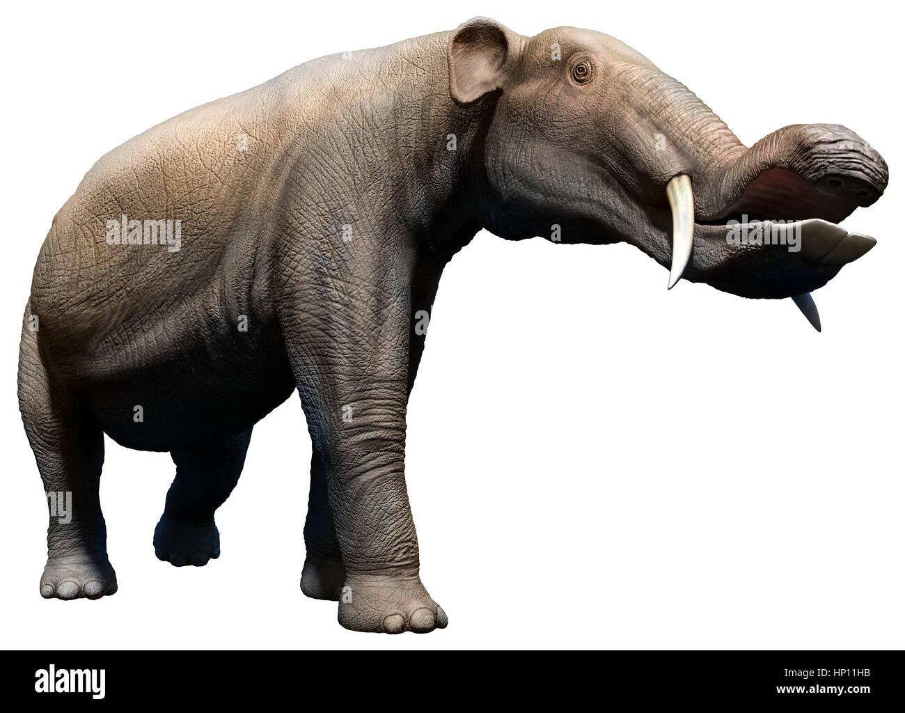 Platybelodon - Stock Image