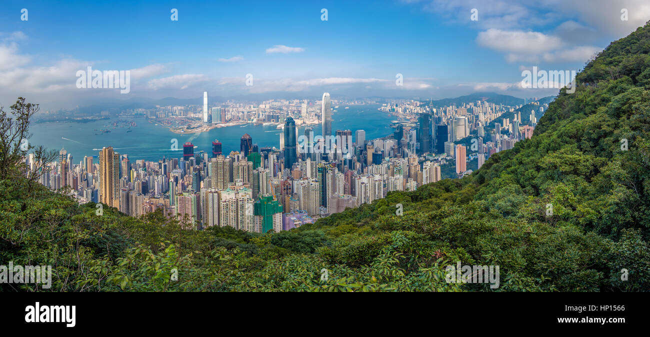 Hong Kong city view from the peak - Stock Image