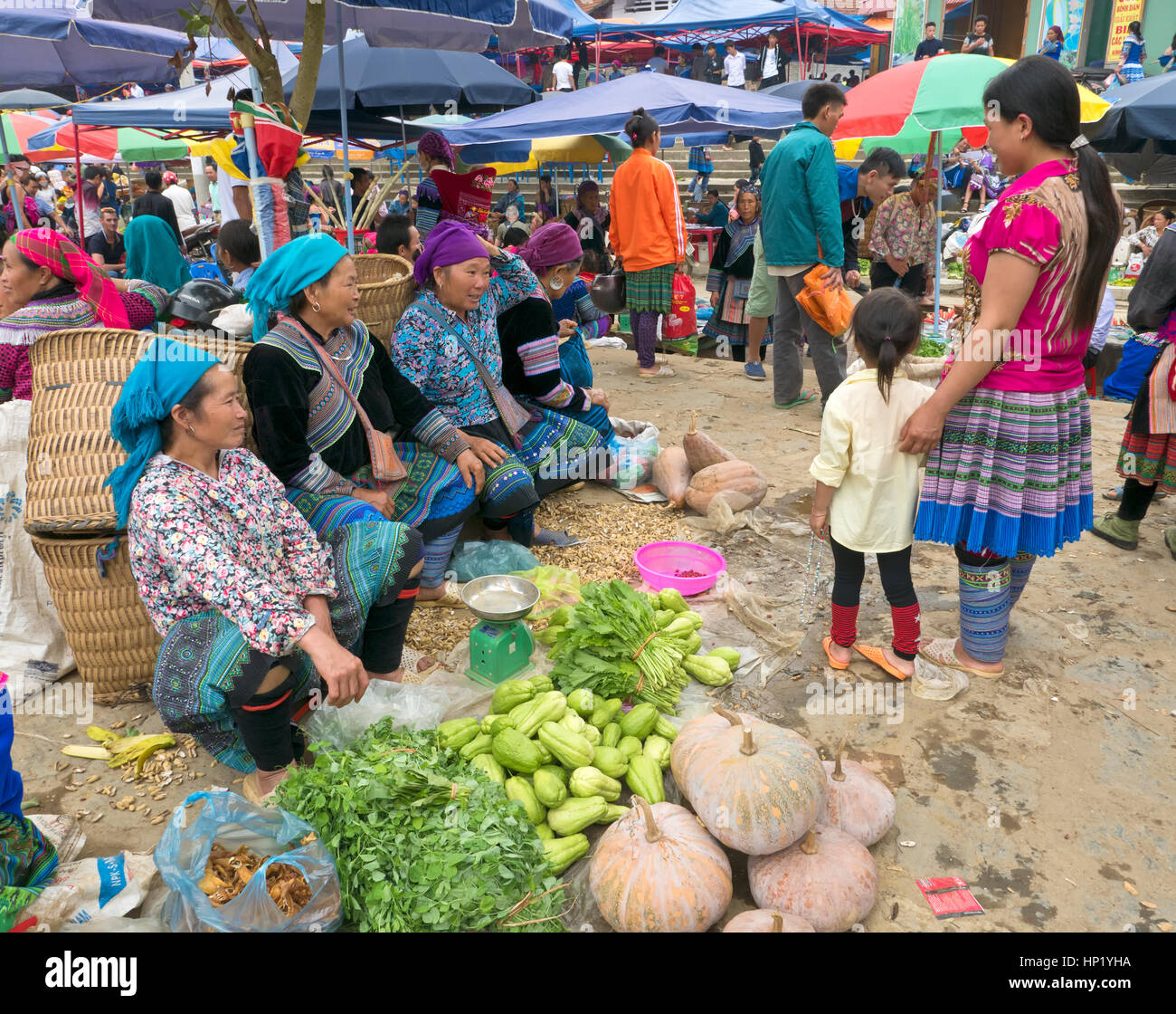 Bac Ha Farmers Market, native farmers selling their home grown vegetables, wearing native dress, conversation with - Stock Image