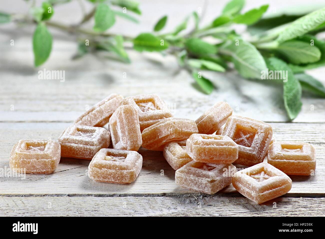 sage candies on wooden background - Stock Image