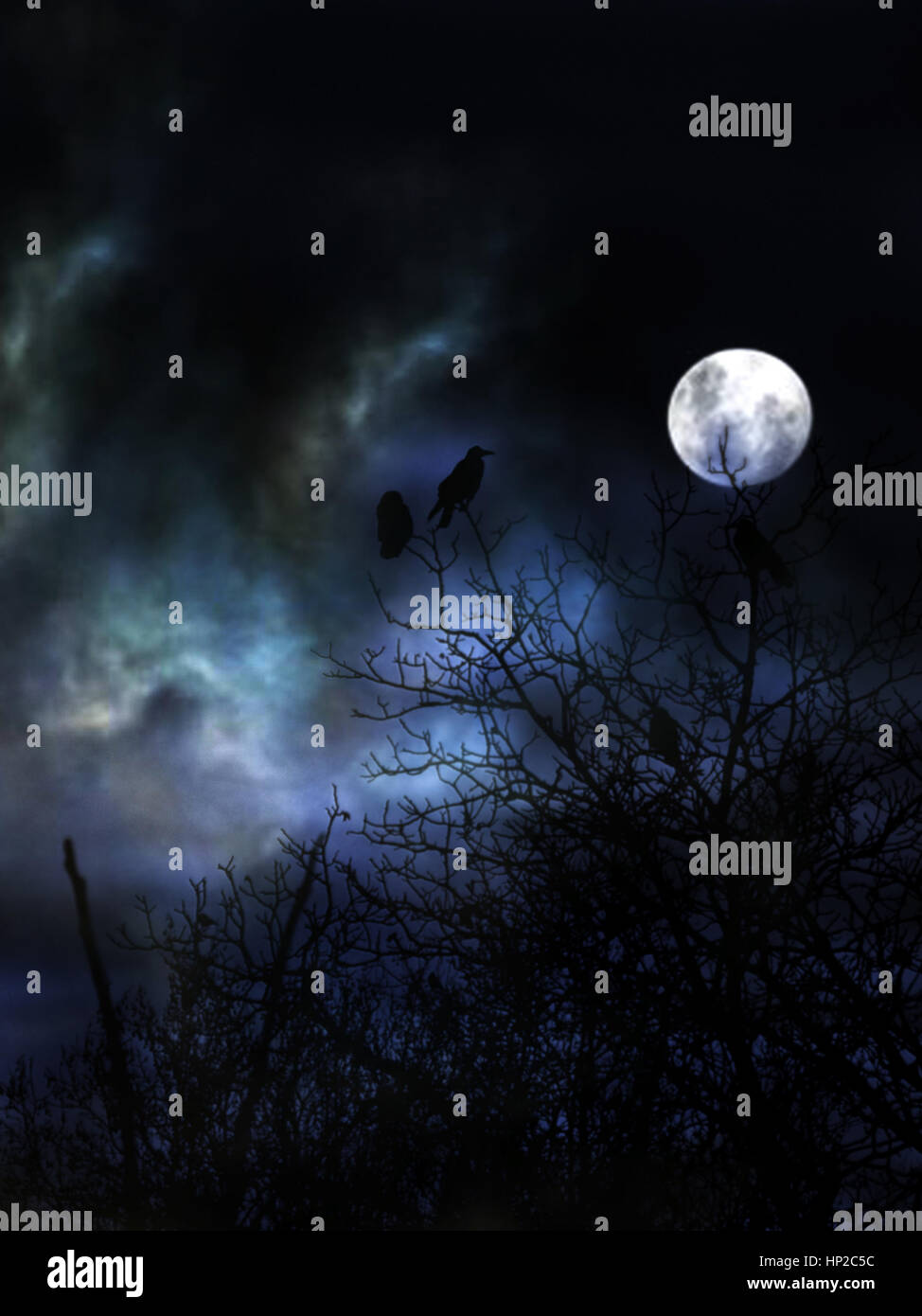 Full moon and forest with birds - Stock Image