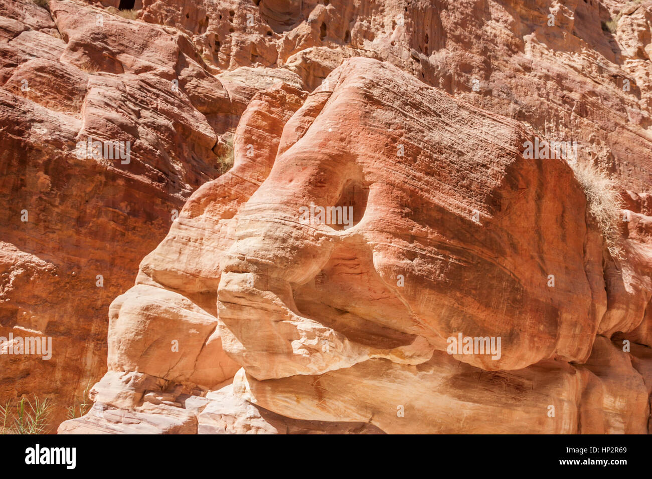 Rocks of pink sandstone resembling elephant head in Siq canyon in Petra, Jordan - Stock Image
