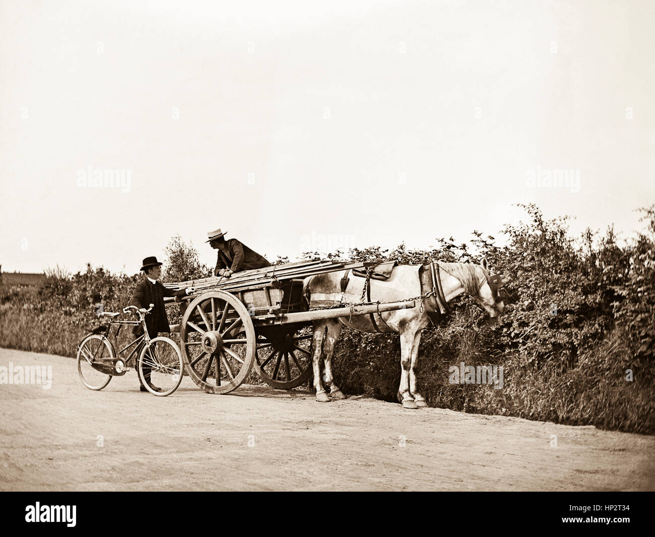 On a rough country lane in Kent, a horse and cart carrying wood planks has stopped at the side of a thick, high - Stock Image
