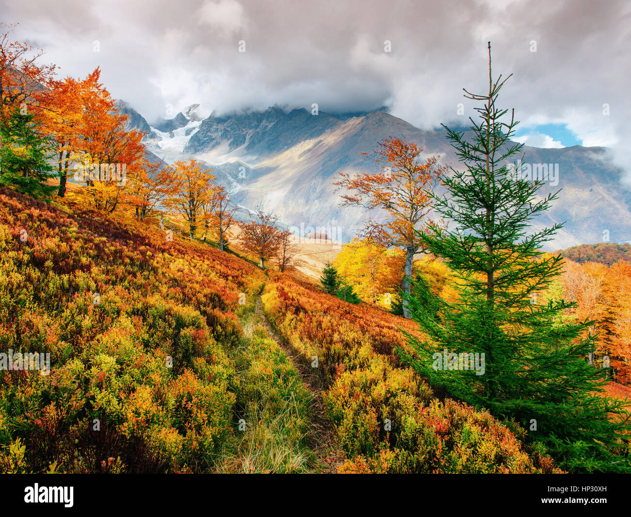 mountain range in the Carpathian Mountains in the autumn season. - Stock Image