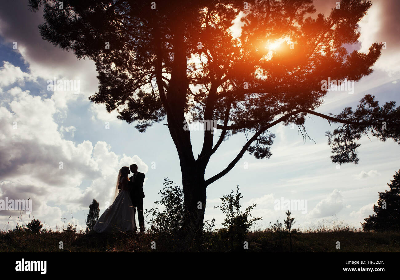 Portrait of beautiful wedding couple at sunset - Stock Image