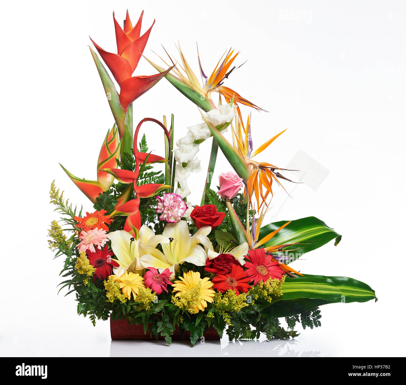 Bright tropical flower bouquet isolated on white background stock bright tropical flower bouquet isolated on white background izmirmasajfo