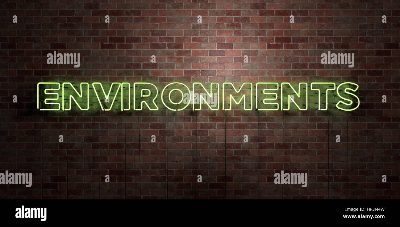 ENVIRONMENTS - fluorescent Neon tube Sign on brickwork - Front view - 3D rendered royalty free stock picture. Can - Stock Image