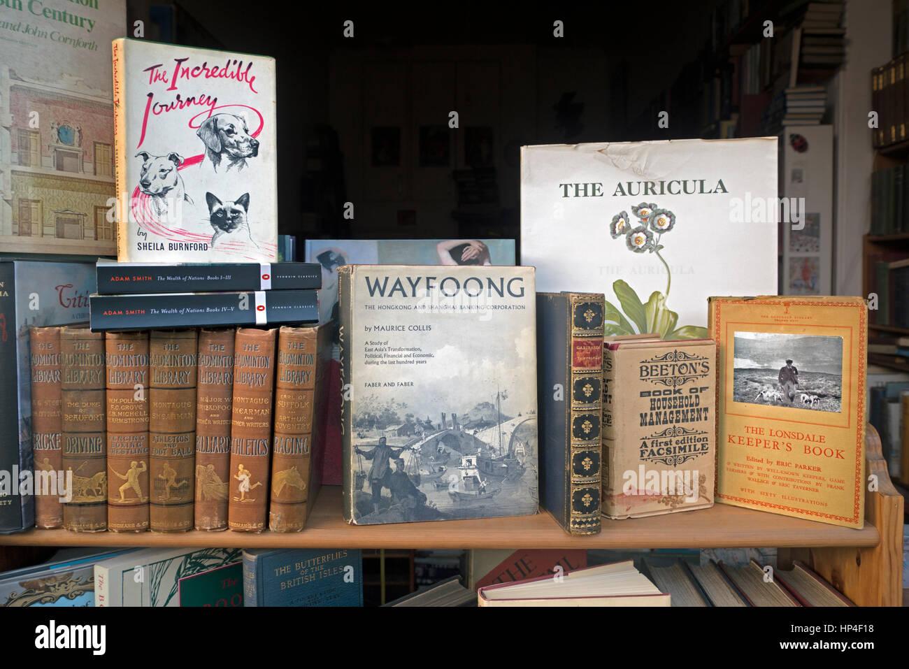 Vintage books for sale in a secondhand bookshop in Edinburgh, Scotland, UK - Stock Image