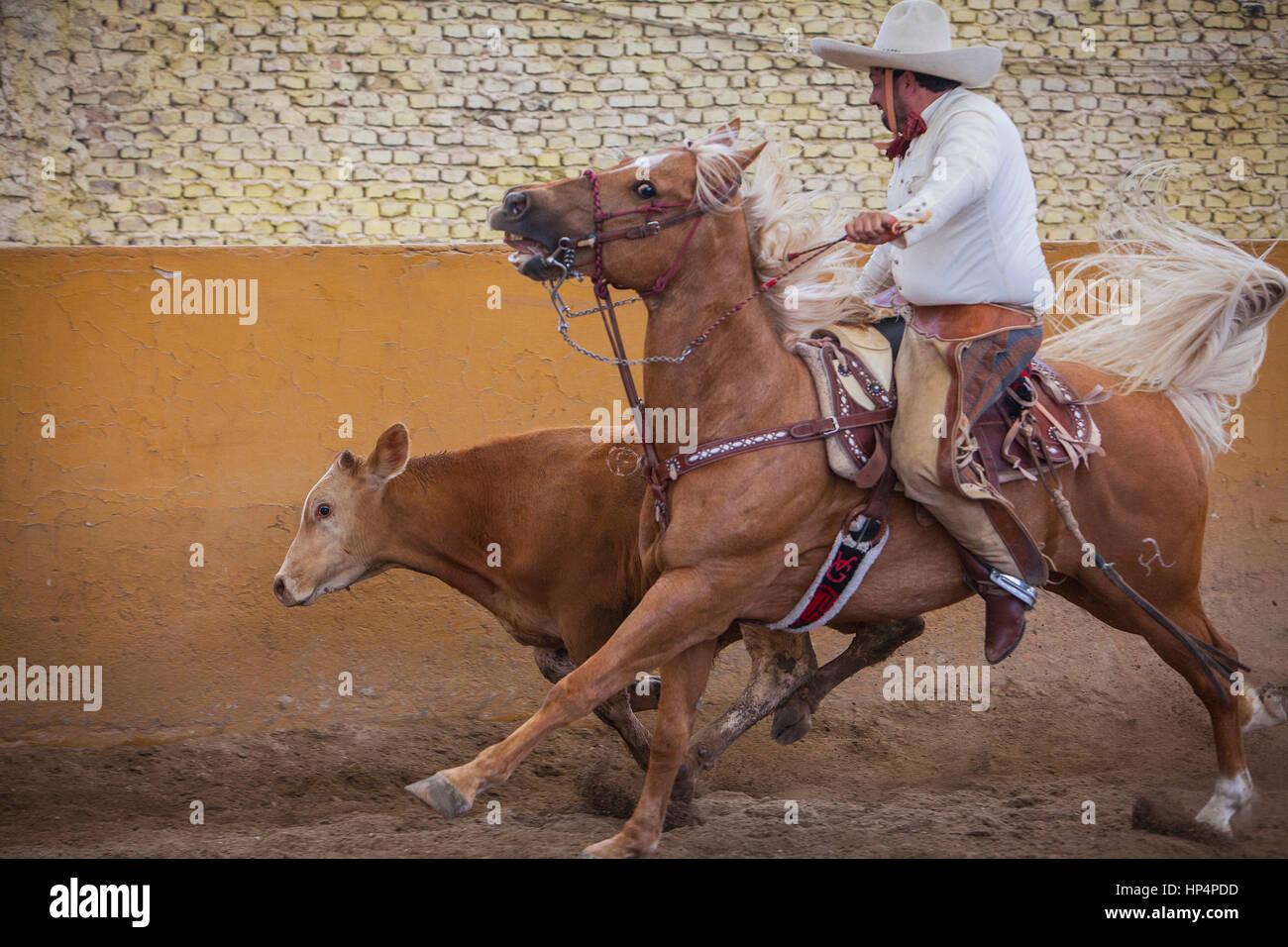 A charreada Mexican rodeo at the Lienzo Charro Zermeno, Guadalajara, Jalisco, Mexico - Stock Image