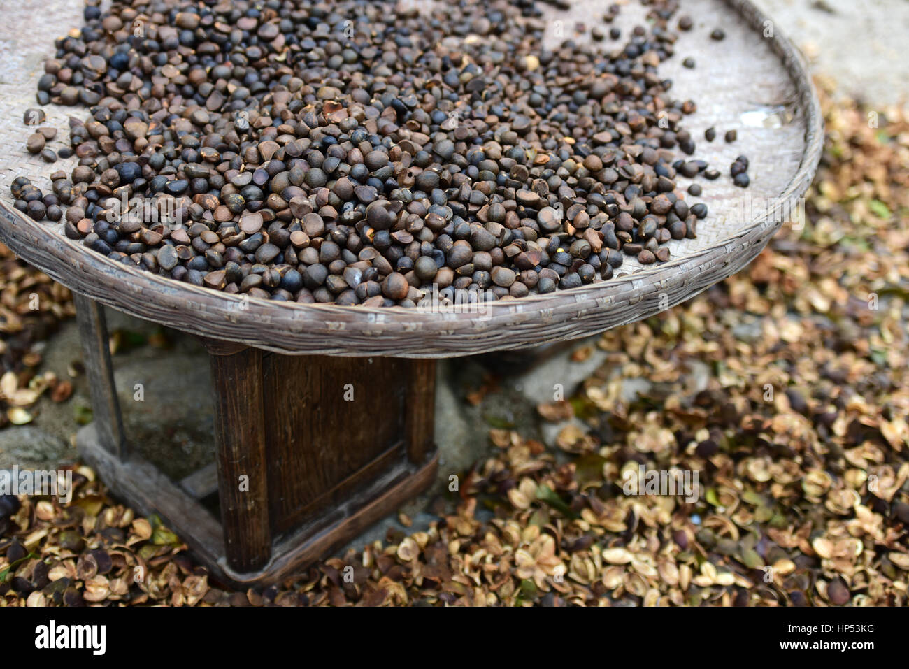 Camellia Oil Seed For Tea Oil With Old Bamboo Basket In An Old Stock Photo Alamy