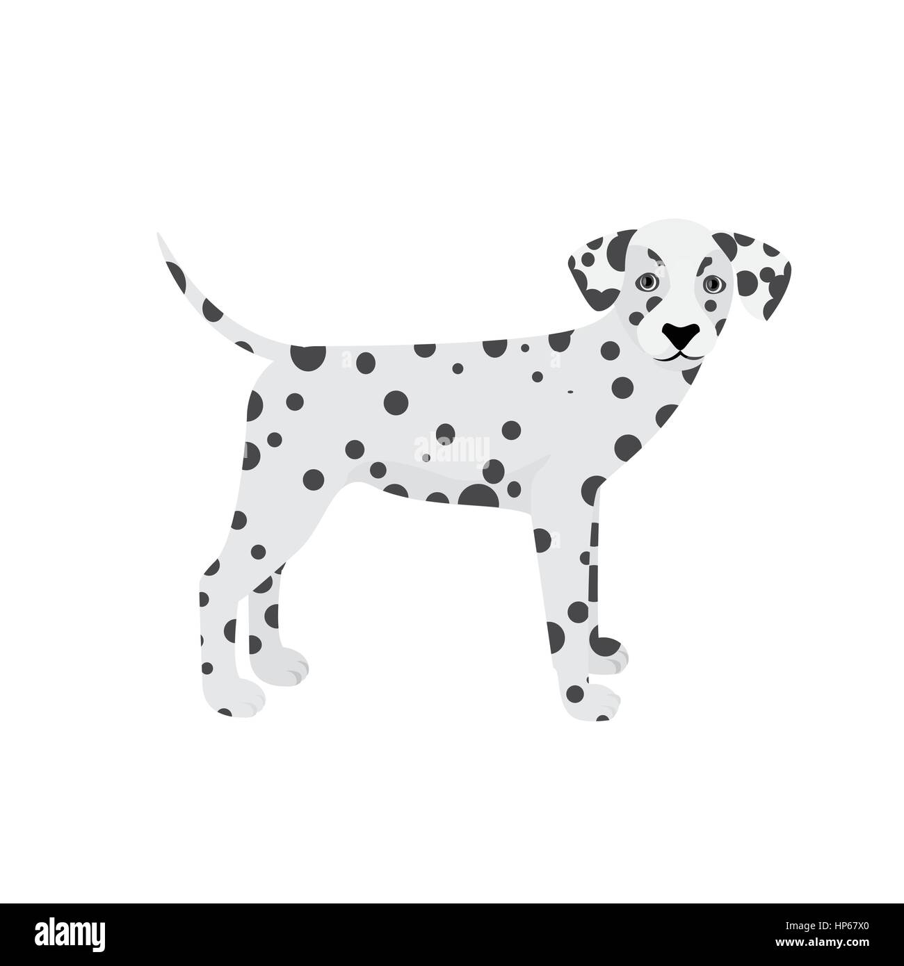 Dalmatian dog vector isolated on a white background - Stock Vector
