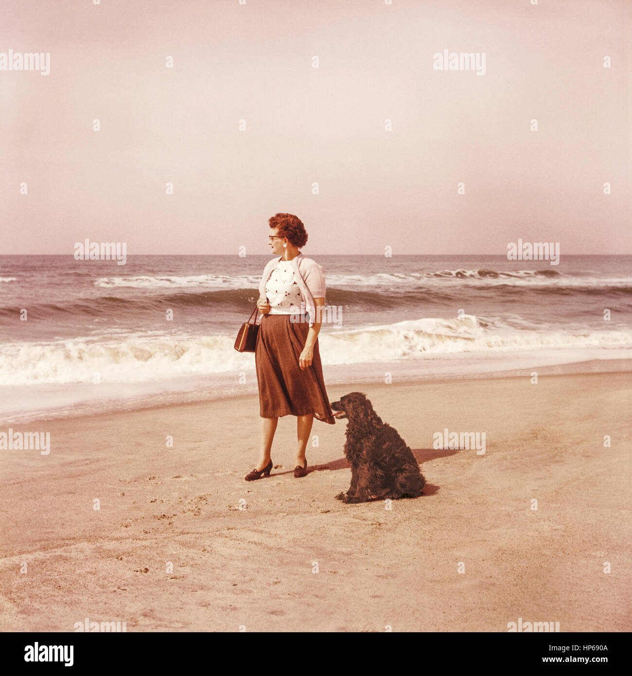 Frauen mit hund kennenlernen