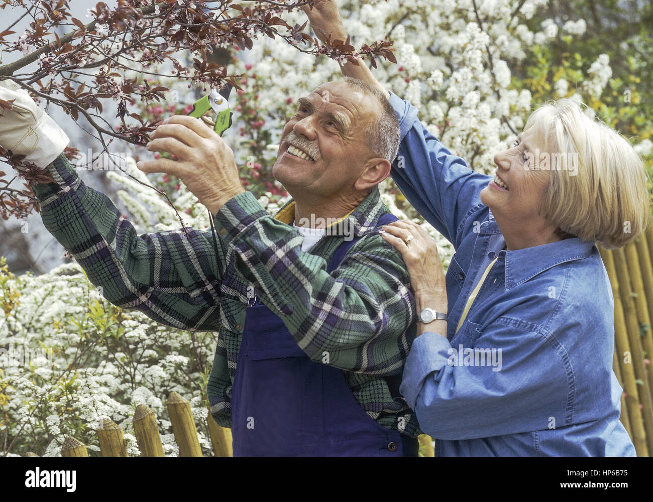 New York Indian Senior Online Dating Website