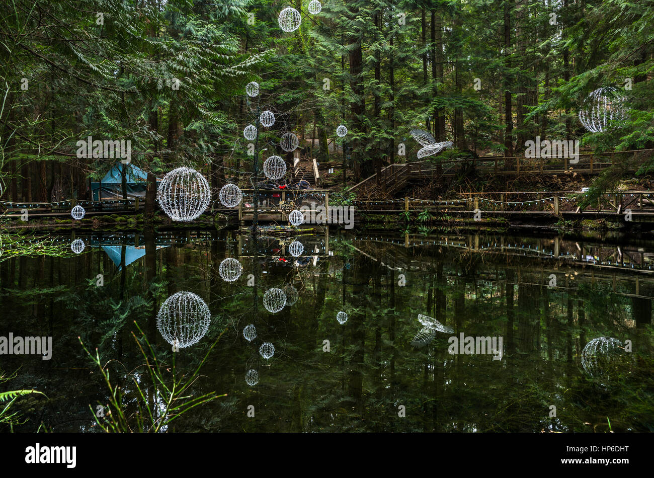 Vancouver, Canada - January 28, 2017: A pond with hanging lights reflected in the water at the Capilano Suspension Stock Photo
