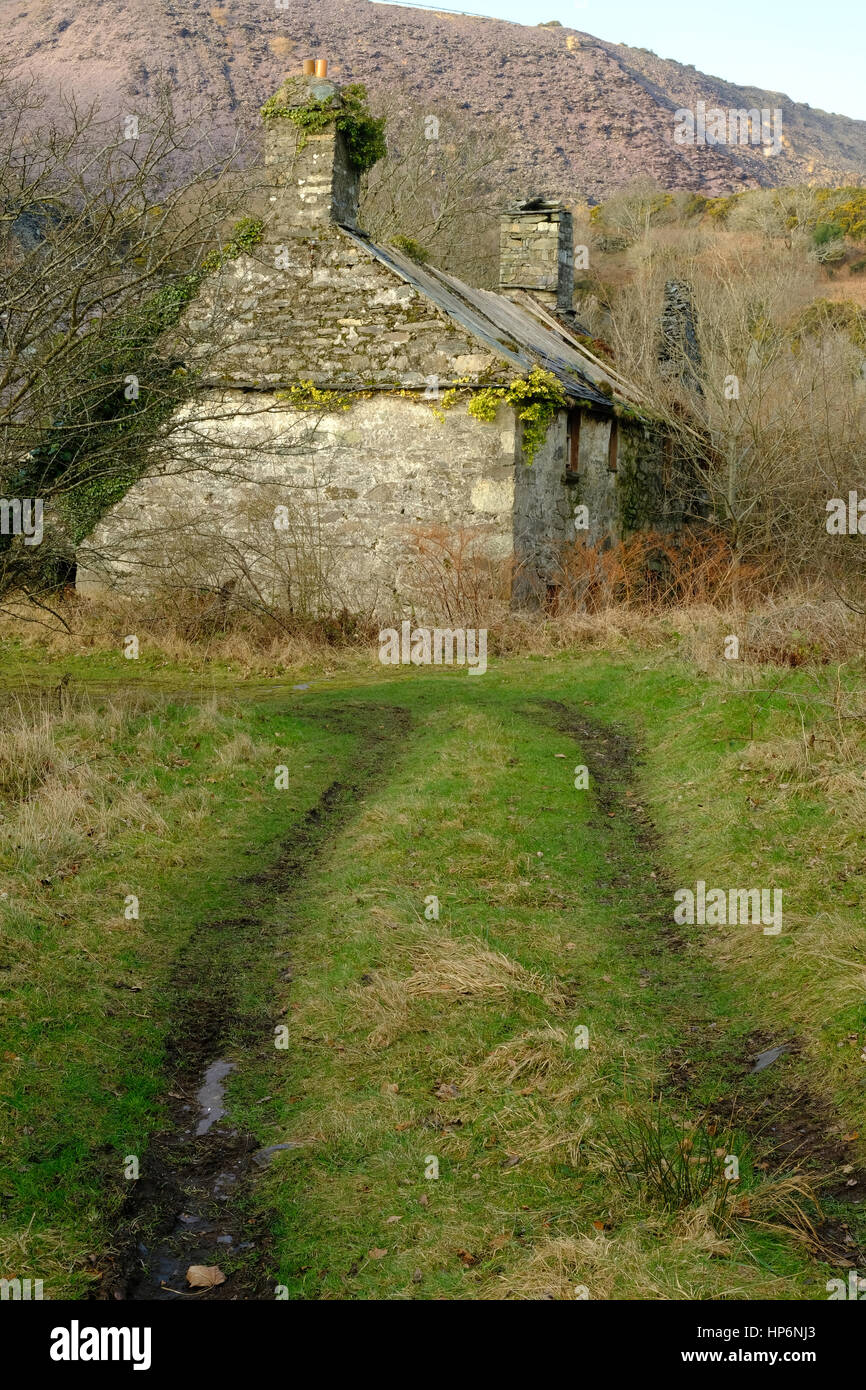 abandoned cottage in a mountain landscape in Wales - Stock Image