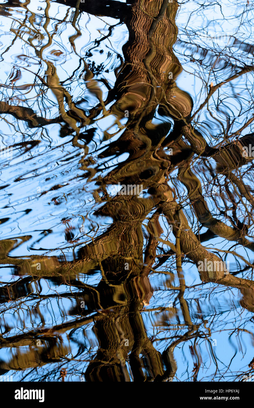 Water reflections in the North Fork Shenandoah River. - Stock Image