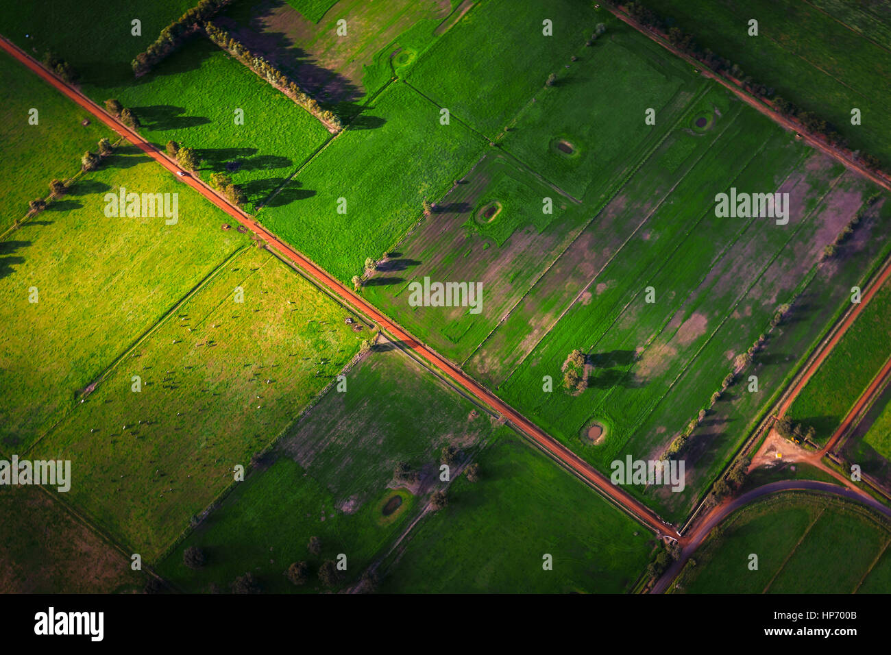 Green Fields - Stock Image
