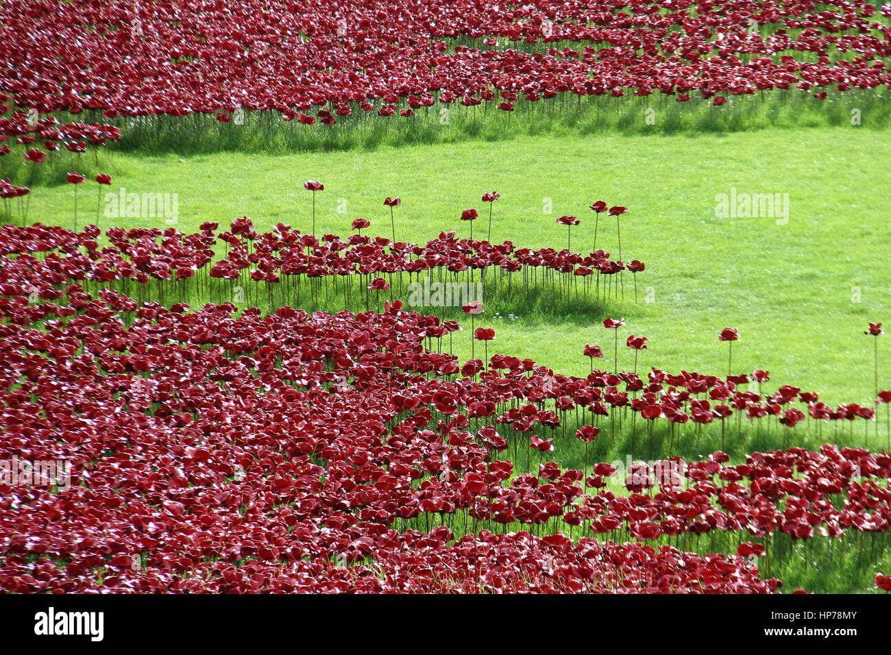 Blood Swept Lands and Seas of Red - remembrance installation by the Tower of London - Stock Image
