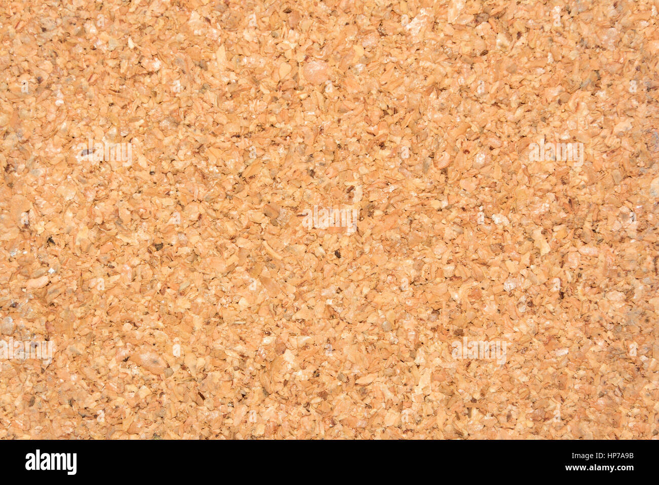 Cortical texture of wood. natural color and texture. Cork - Stock Image
