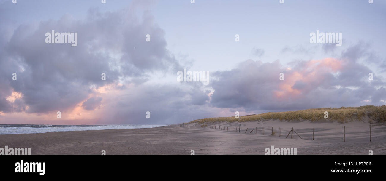 Panorama image of dunes with grass, a sand beach and the North Sea at the Dutch coast of the Hague near Scheveningen, - Stock Image