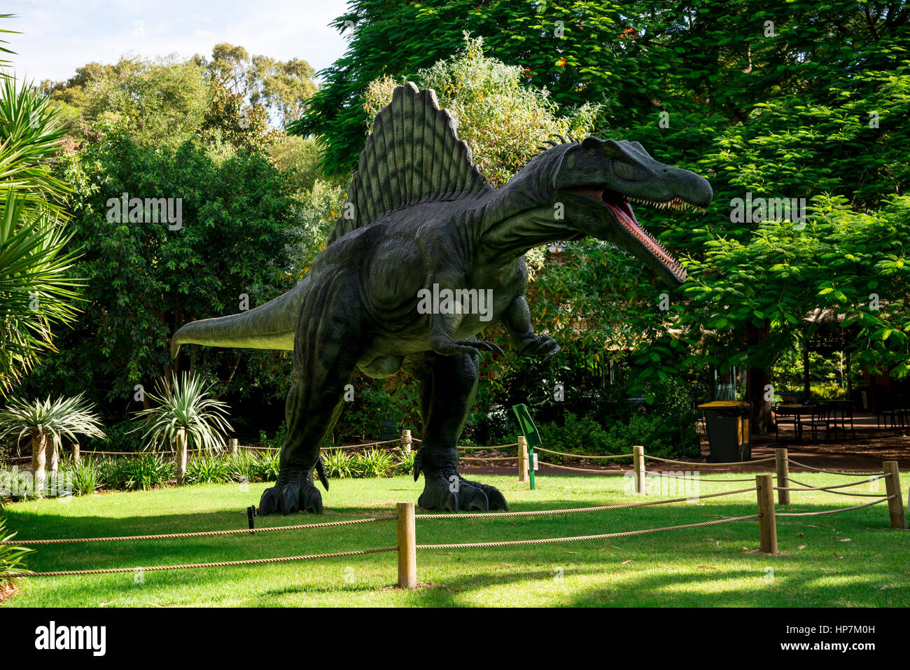 Standing Spinosaurus display model in Perth Zoo as part of Zoorassic exhibition - Stock Image