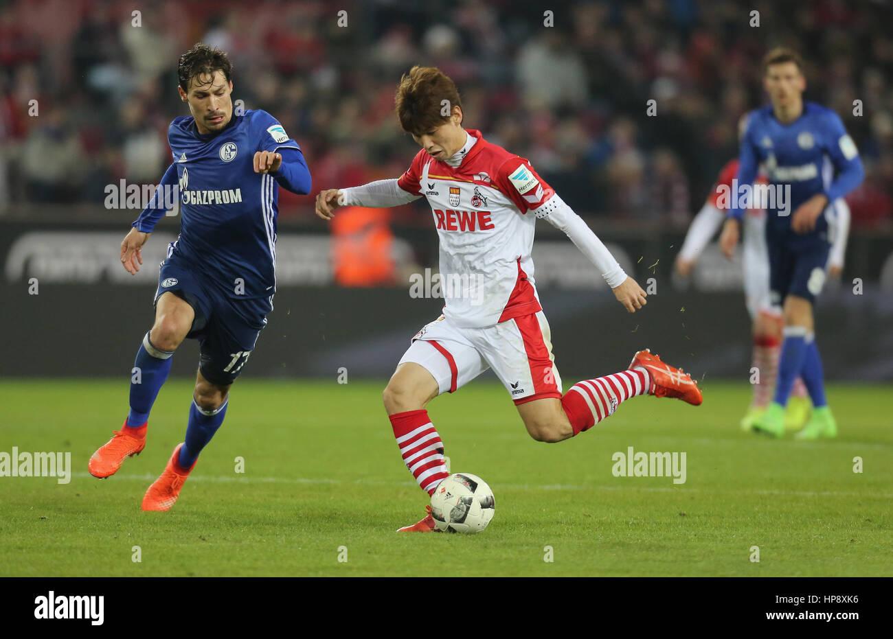 Cologne, Germany, February 19, 2017, Bundesliga matchday 21, 1. FC Koeln - FC Schalke 04:  Tackling Benjamin Stambouli - Stock Image