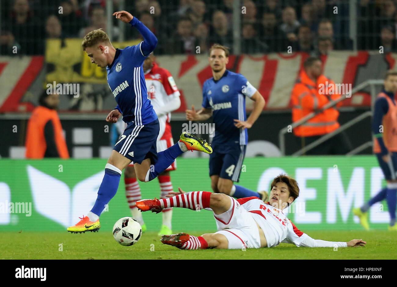 Cologne, Germany, February 19, 2017, Bundesliga matchday 21, 1. FC Koeln - FC Schalke 04:  Tackling Max Meyer (Schalke, - Stock Image
