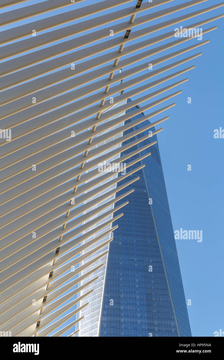 The ribbed wings of the Oculus World Trade Center Transportation Hub contrast with One World Trade Center (Freedom - Stock Image