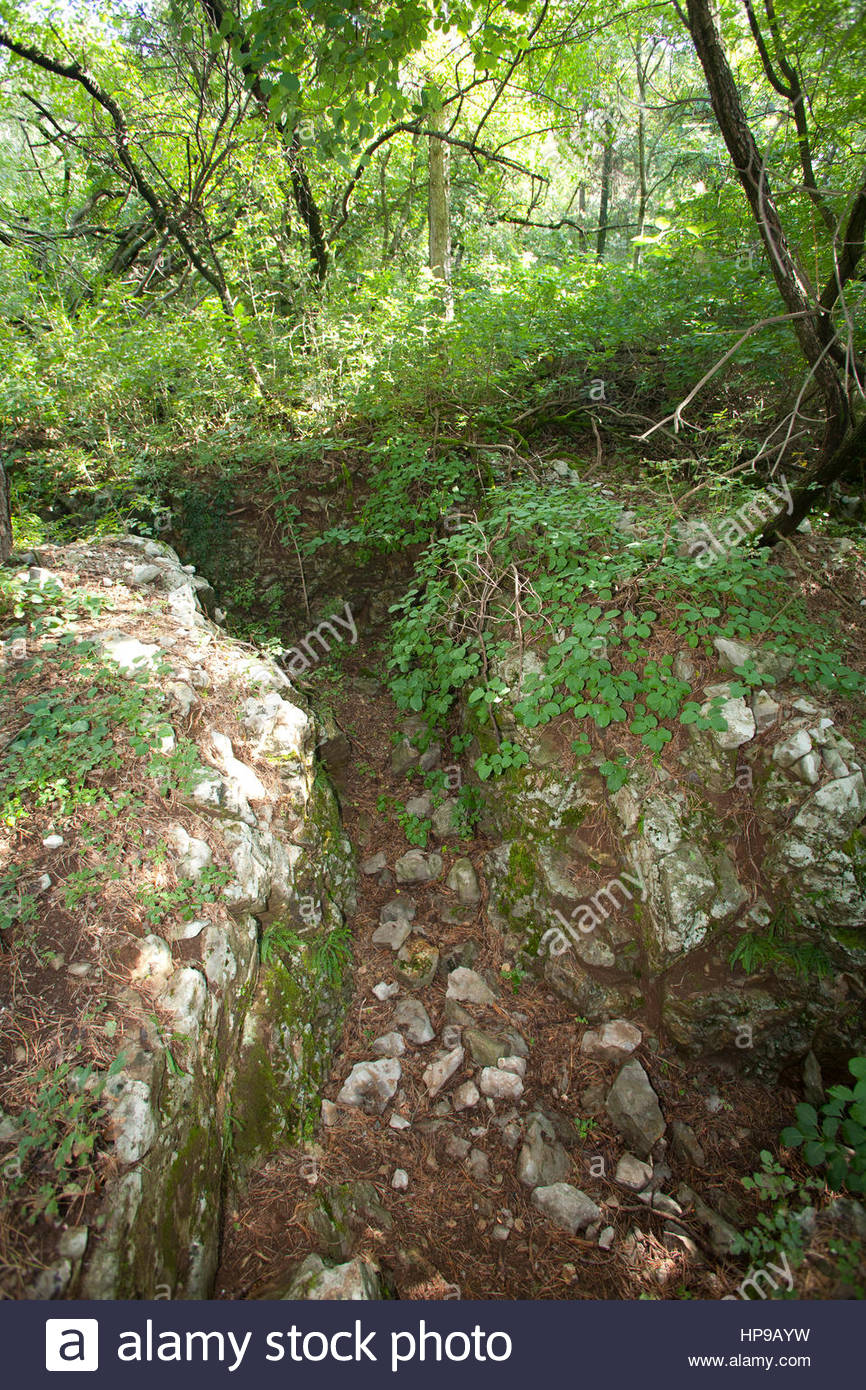 trenches of the I world war,mountain san michele,italy - Stock Image