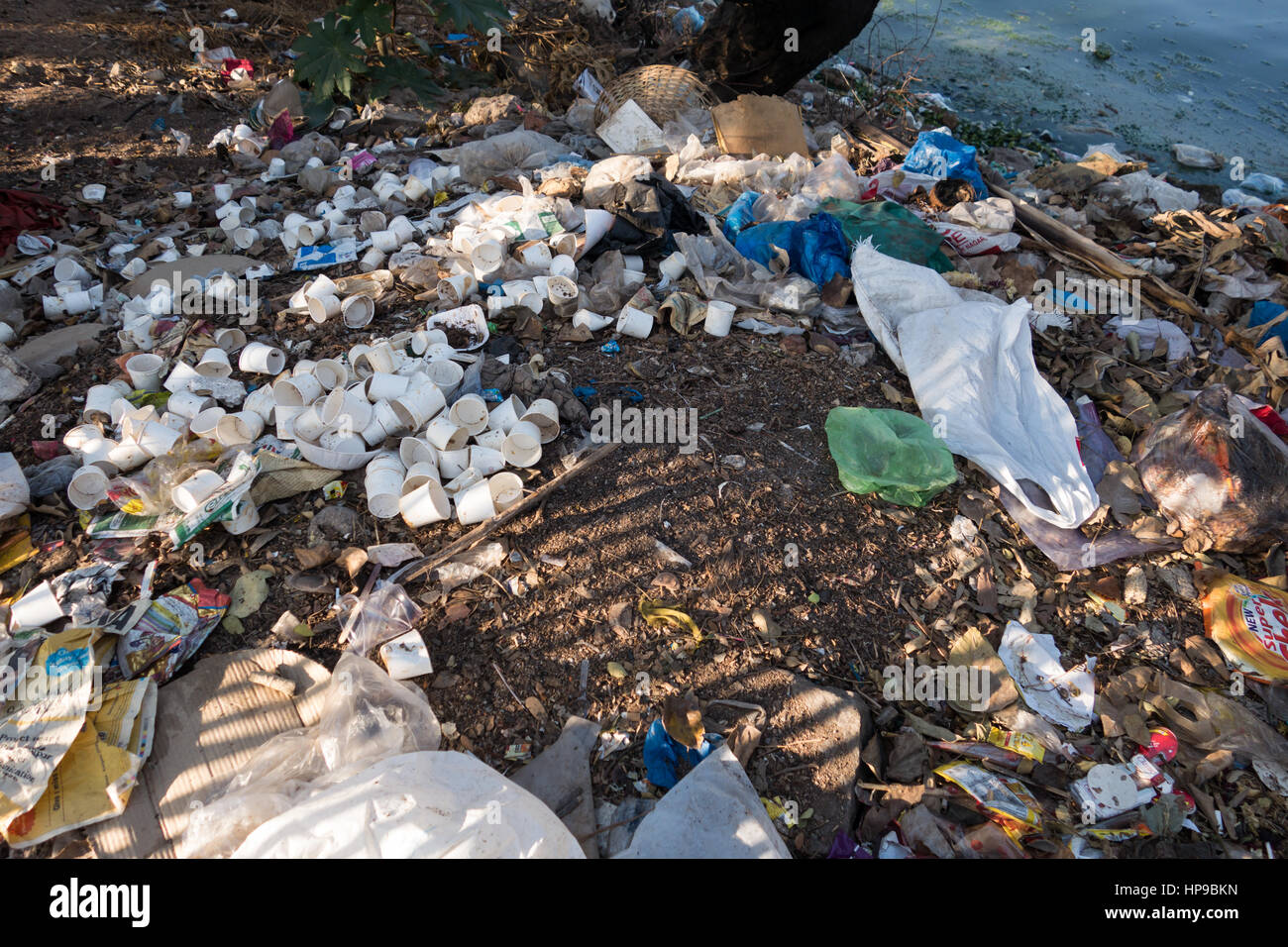 HYDERABAD, INDIA - FEBRUARY 20,2017 Used paper cups and trash lie on the banks of Hussain Sagar Lake in Hyderabad,India - Stock Image