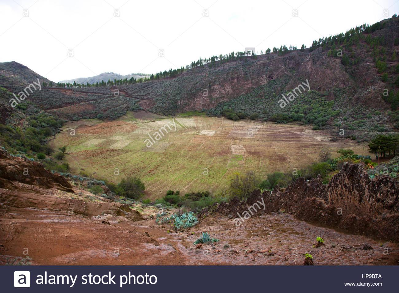 Caldara de los Marteles,crater,extinct volcano,gran canaria,canarie,spagna - Stock Image