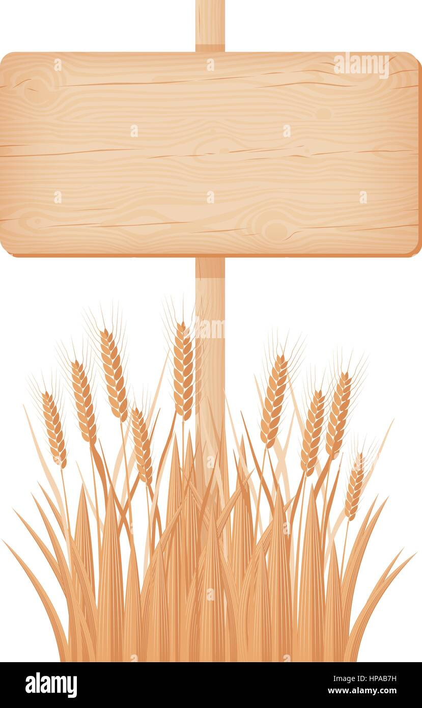 Wooden rectangular signboard with knots and cracks on a pole at the wheat field vector illustration - Stock Vector