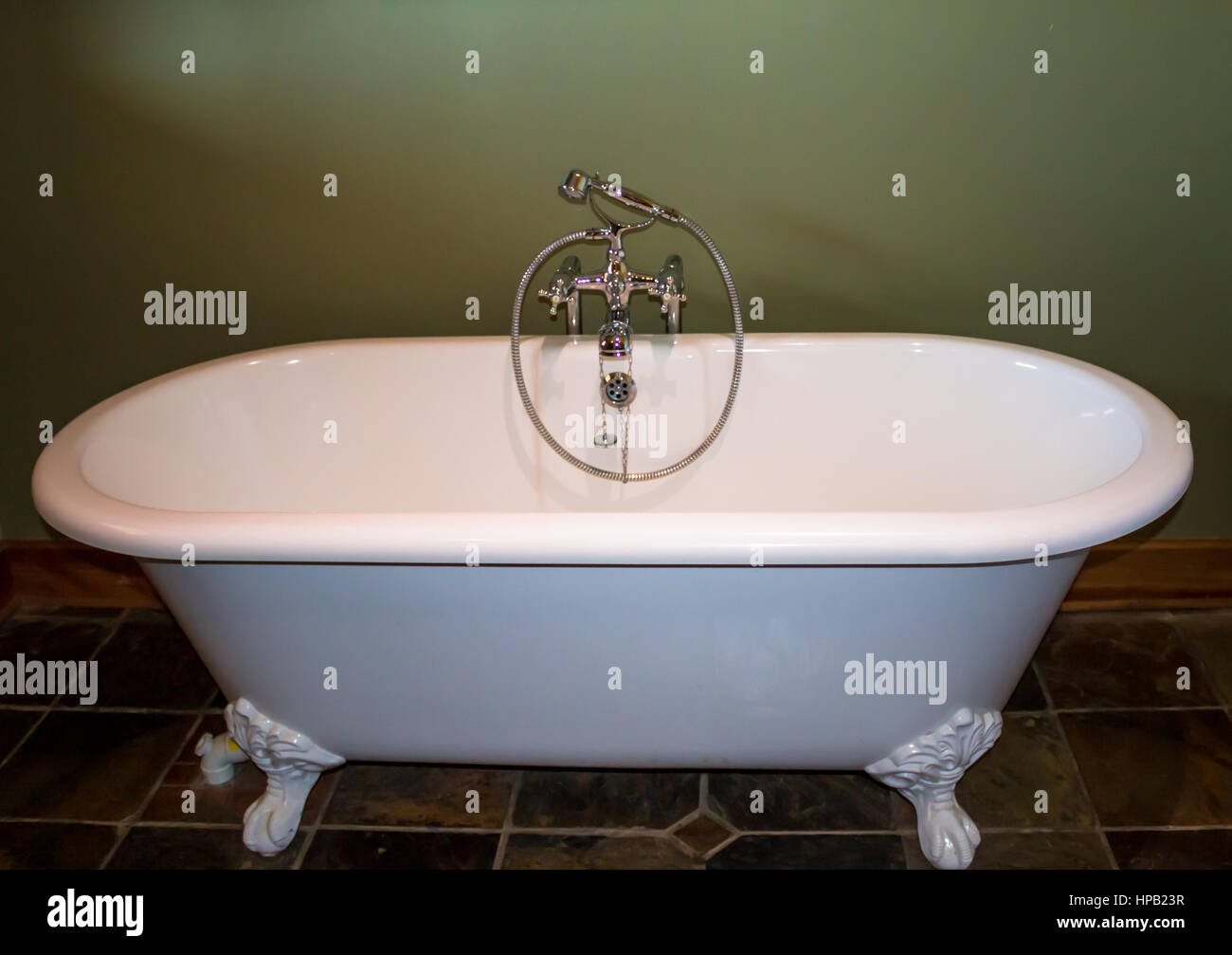 White luxury roll top bath tub against olive green background - Stock Image