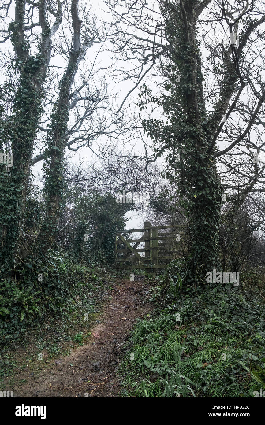 Misty day Footpath Gate Newquay Cornwall UK weather - Stock Image