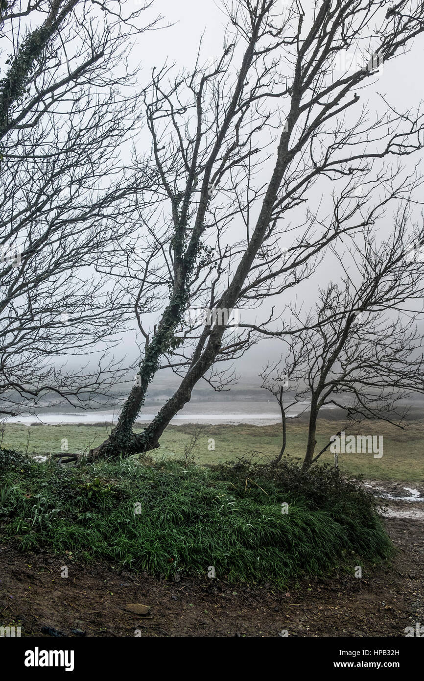 UK weather Misty day. Gannel Estuary Newquay Cornwall Stock Photo